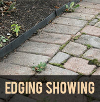 paver protector edgeing showing