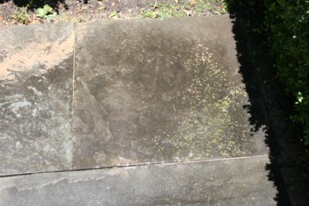 Blustone PatioWalkway Cleaning & Sealing in Barrington Illinois 2 after