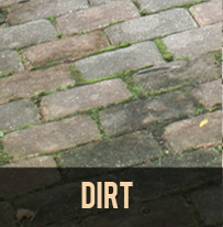 paver protector dirt