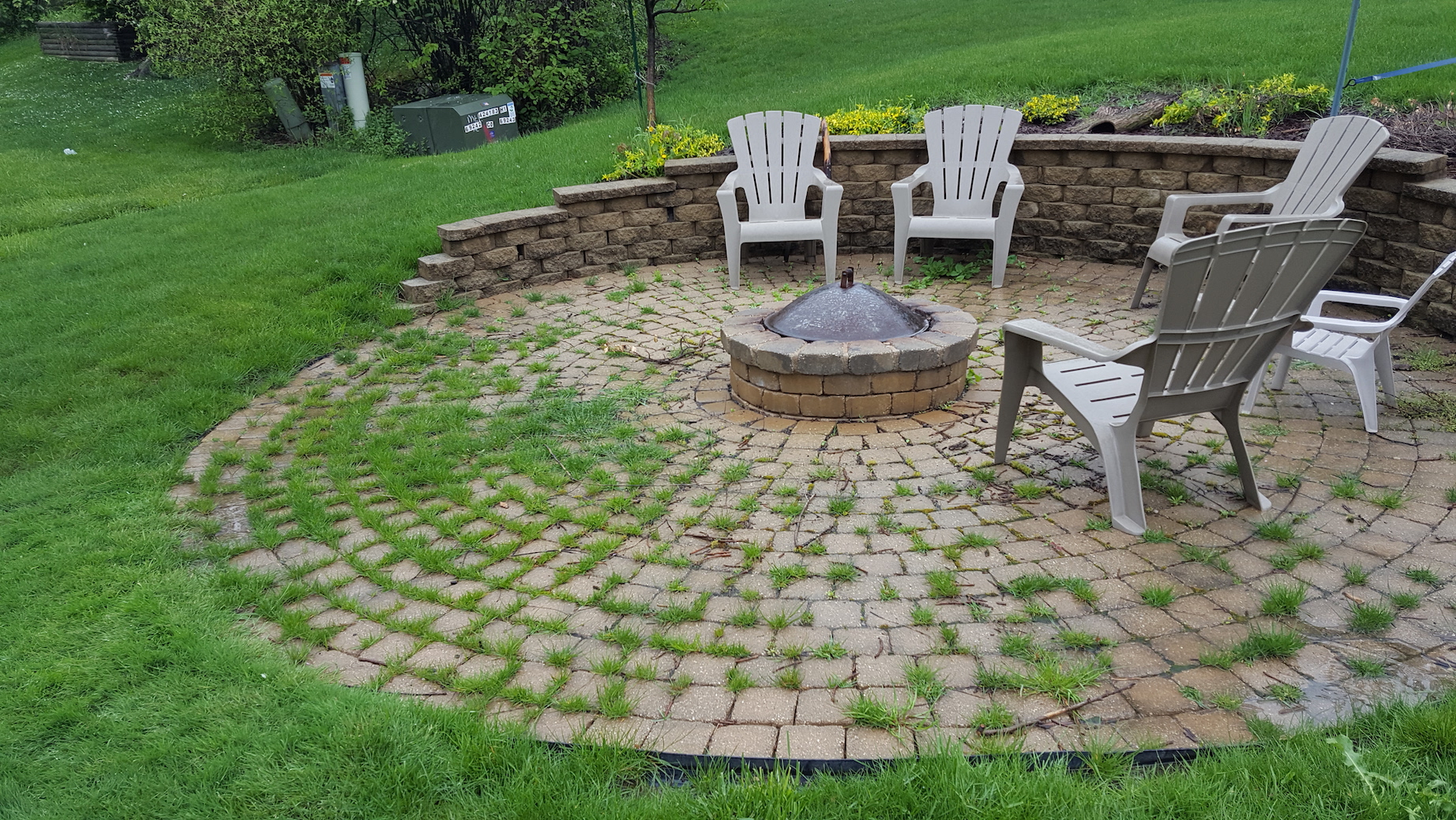 Weeds In Brick Paver Patio Joints Suck! - IL Stone & Brick ... on Backyard Brick Pavers id=77640